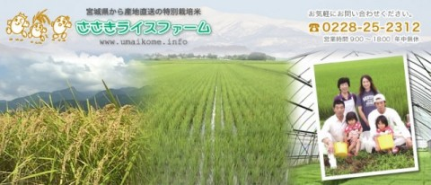 [shipping directly from the producer special cultivation rice] Sasaki rice farm